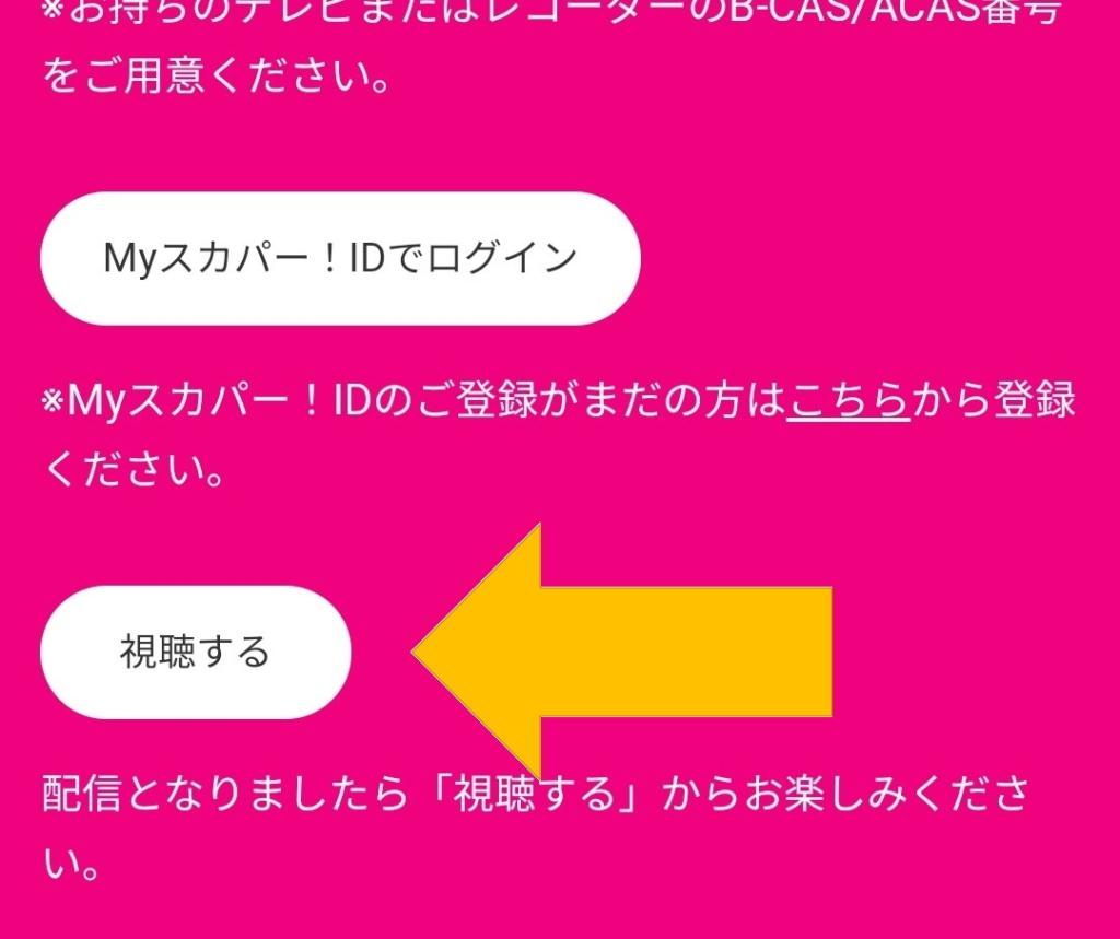 船木結_BIG_LOVE_視聴方法_3