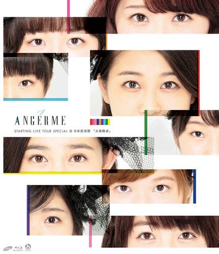 アンジュルム STARTING LIVE TOUR SPECIAL @日本武道館 『大器晩成』